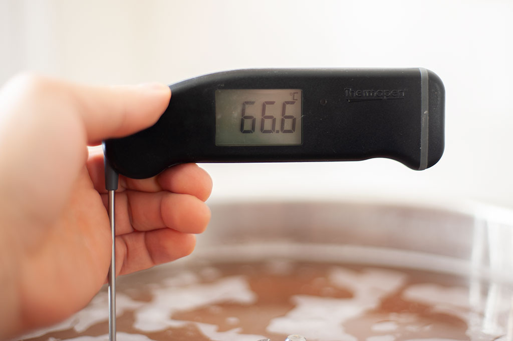 Beer mash temperature taking the the thermopen
